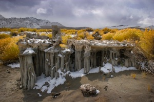 Barbara Evans Barbour color digital photography archival quality Mono Lake, CA