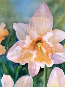 geneva davis watercolor daffodil flower floral