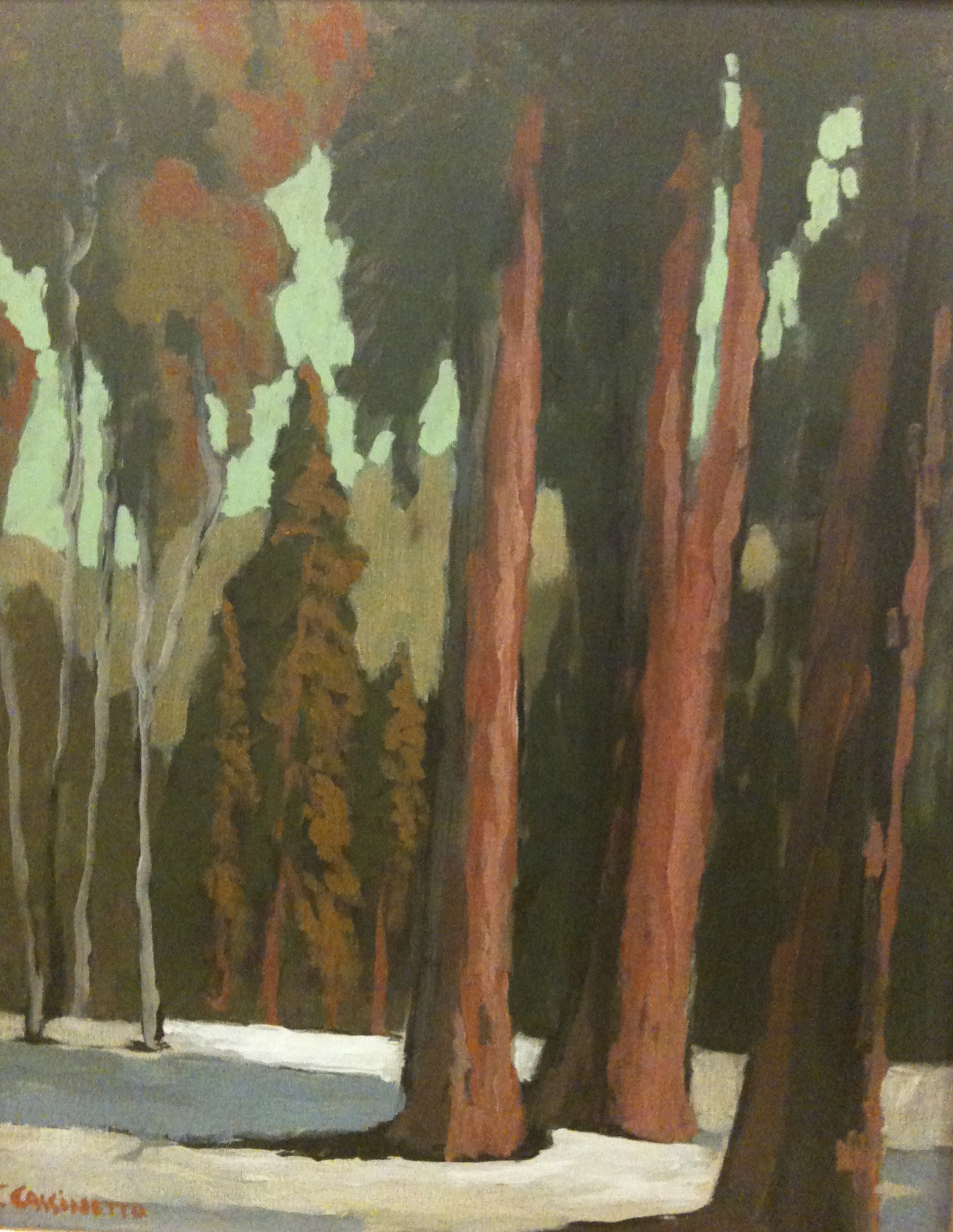 Jack Cassinetto, Around Lake Tahoe, eucalyptus school, plein air